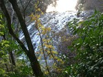 鹿目の滝6